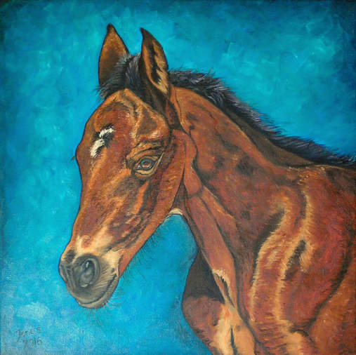 Horse portrait. Oil painting by Kasia Jones  www.kasiajones.com